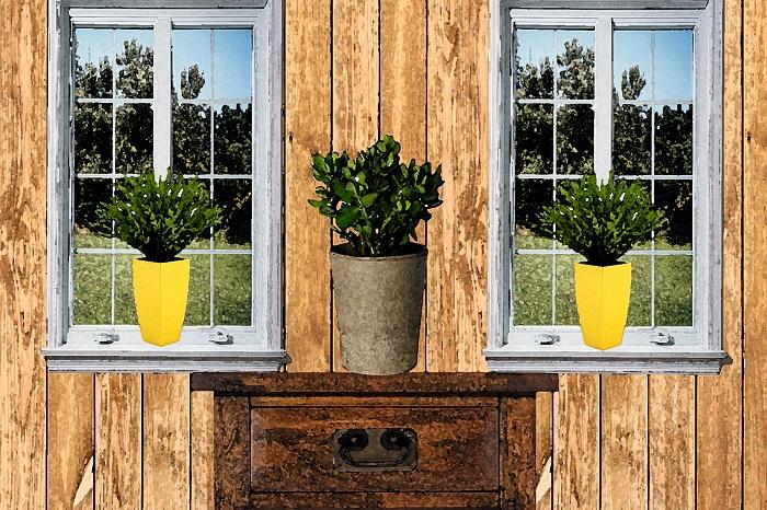 green-houseplants4
