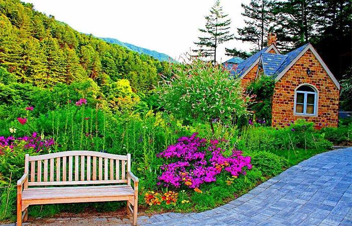 beuatiful sprcued up garden
