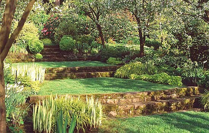 terraced lawn and backyard landscaping